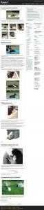 guau-ke-perro-raza-gadget-club-foto-y-mucho-mase280a6-20081018