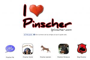 Me gusta botón Pinscher
